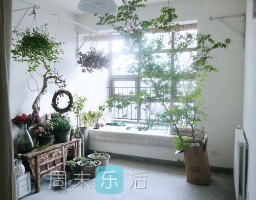 室内花房装修设计