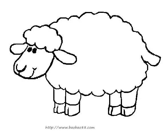 简笔画羊-知识 羊年话 画 羊