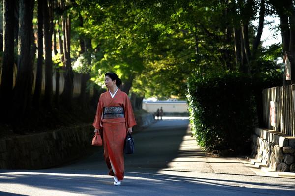 日本散记:和服美女惊艳清水寺