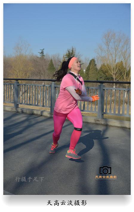 北京第四届奥森光猪跑,诙谐有趣图片
