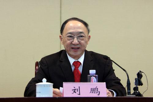 国家体育总局局长刘鹏(资料图)