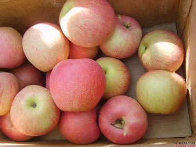 孕期饮食:孕妇吃什么水果好!