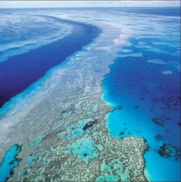 island)--最自然原始的度假岛    主要景点包括:心形珊瑚岛,海洋生物