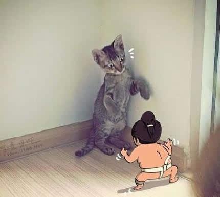当宠物遇上猥琐大叔时,哈哈哈,笑傻了图片