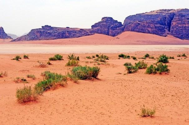 瓦迪拉姆位于約旦南部,面積740平方公里,與沙特阿拉伯接壤.圖片