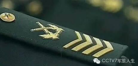 原文配图:一级军士长肩章。