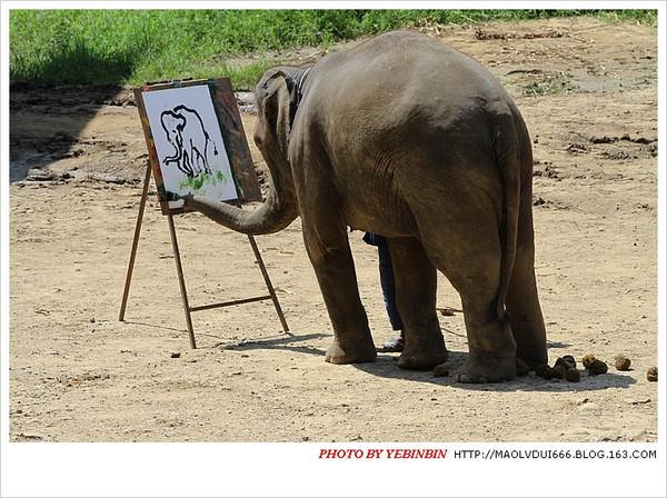 大象发夹步骤图解