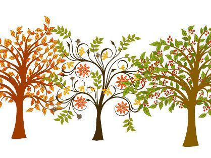 教孩子认识身边的花草树木图片
