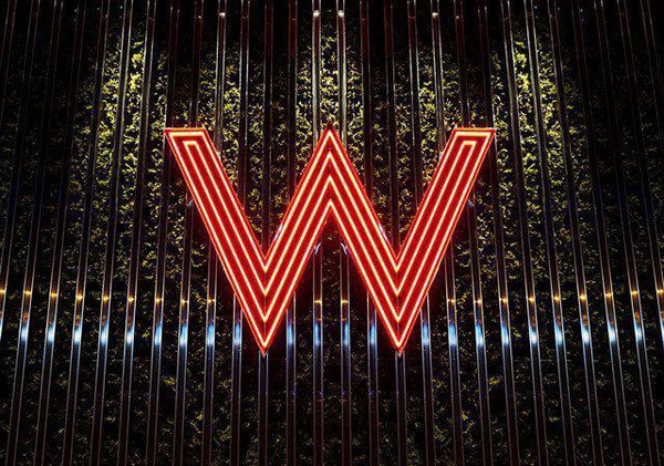 ?n???w?_全球有一个叫w的酒店,太炫酷了!