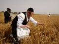 以色列人的生活什么样