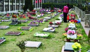 每个石碑上都雕刻着生者对逝者的深深思念CFP供图