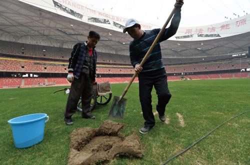 ▲除了重铺赛道,体育场的草皮也要进行更换