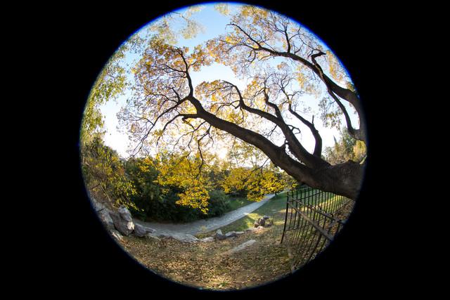 超广角的奇妙世界 5款佳能广角镜头推荐