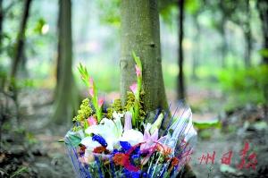 """昨天,白云山思园内,市民带着鲜花来拜祭""""树葬""""的亲人。"""