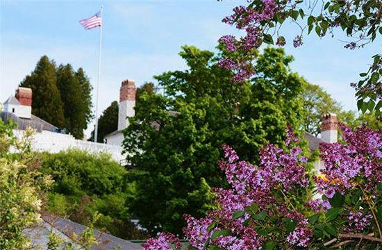 波多吉野衣做爱视频_吉野樱花树作为礼物栽种在华盛顿的西波托马克公园的潮汐湖畔,东波多