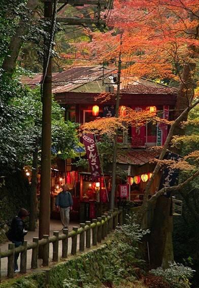 赴日本大阪旅游旅行购物攻略秘籍-搜狐三亚旅行攻略思维导图图片