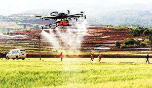 """在""""兩區""""倘甸鎮德著村委會,一架搭載了30公斤農藥的八旋翼無人機對圖片"""