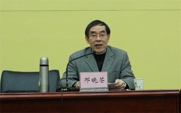 邓晓芒谈上山下乡:幸好我们还在 不然就死无对证了-搜狐