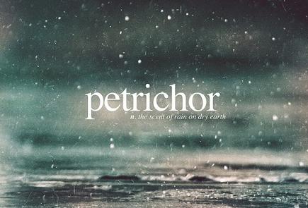 为你揭秘那些在外国人眼中最美丽的英文单词