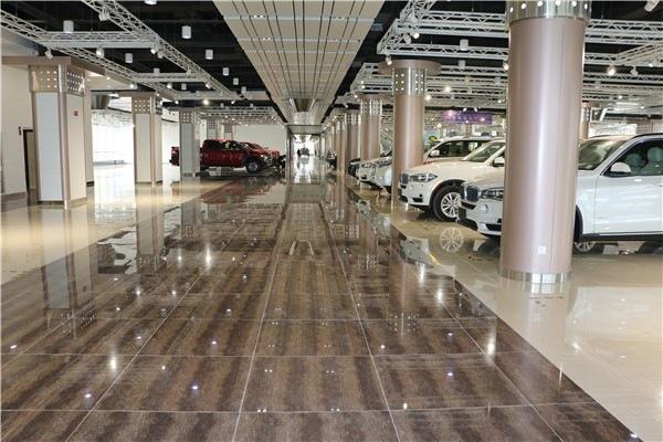 驾驭梦想 共筑和谐-森扬国际汽车城盛大开业图片