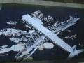 日本飞行员故意坠机之谜
