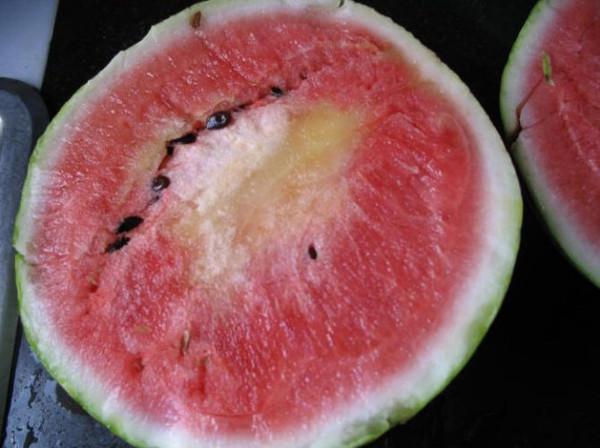 桃子加西瓜有毒