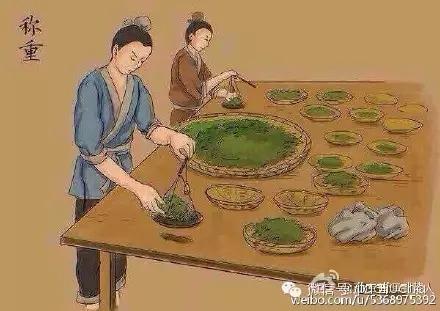 绿茶制作过程_茶叶制作流程_茶叶的种类 - 随意优惠券