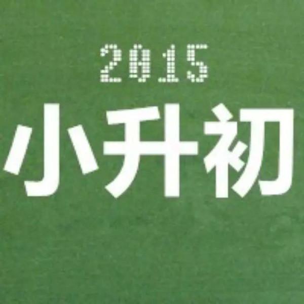 2015齐市增城小升初初中招生计划私立广州学校图片
