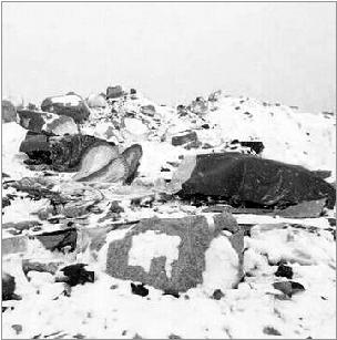 登山队的营地遭遇雪崩袭击。网络截图