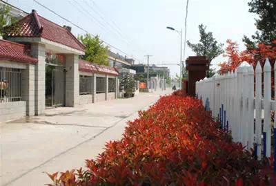 自驾游推荐:扬州周边美丽乡镇自驾游