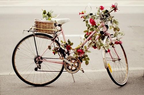 日本留学 在日本骑自行车注意事项图片