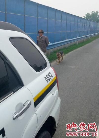 """这名男子表示,近日天热,他的狗不爱动,想着高速路面宽阔,拉着狗一起""""健身""""。"""