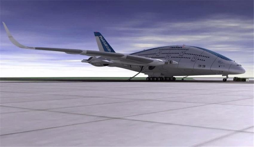 """外国设计师设计未来概念飞机""""天空鲸鱼""""(组图)图片"""