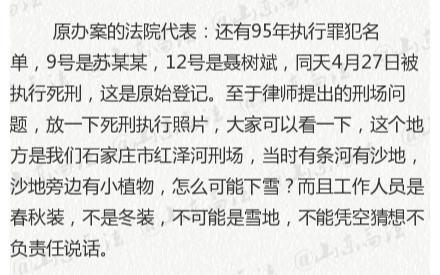 """原办案单元回应""""聂树斌跪在雪地被枪决""""质疑"""