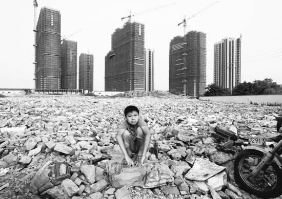 """浙江省杭州市江干区一处在建工地,不时见到无事、无聊的""""候鸟""""CFP供图(资料图片)"""