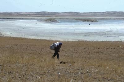 巴彦淖尔镇,一些湖泊曾经枯竭。