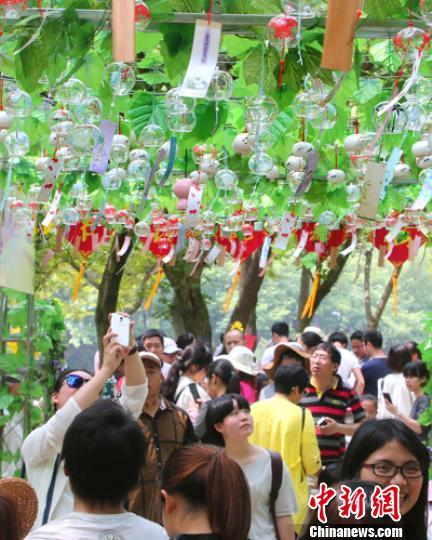 仙都景区挂出上千只风铃供游主欣赏 詹坚宇 摄