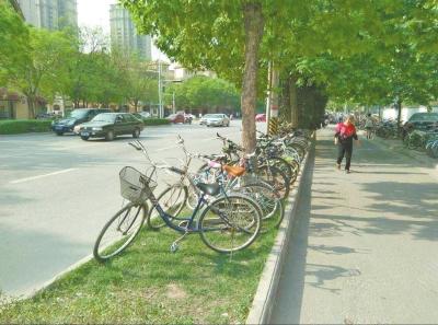 美化带中停满了门生们的自行车。