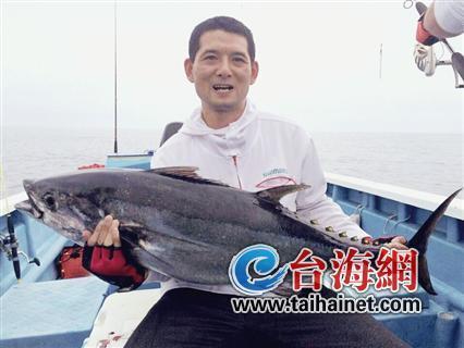 罕见蓝鳍金枪鱼