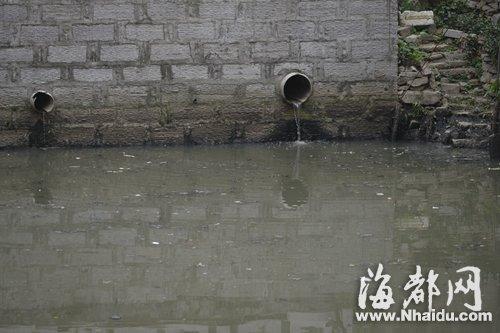 村民沿河占地种菜养鸭场粪便直排 磨洋河黑臭
