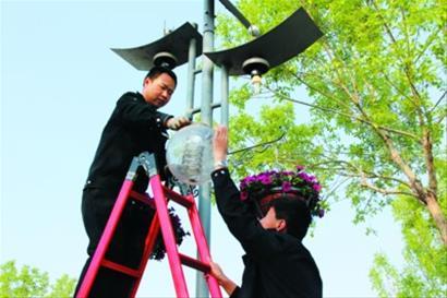 提高工作标准,在园区内摆放了十万盆鲜花,并在游览路线挂起了灯杆花篮