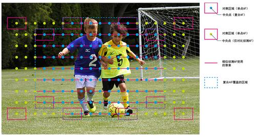 不过除了出色连拍能力外,对焦性能好不好也直接决定了连拍的成片率。尼康J5采用的混合对焦系统具有171个AF点,几乎覆盖了整个取景画面,其中的105个点为相位侦测点,所有的105个AF则是覆盖画面的整个中央区域,能够比较快速的对应所有类型的动作。