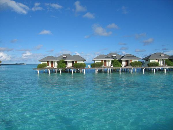 大�y�9�%9�._岛上的太阳岛度假村是马尔代夫最大的度假饭店之一,郁郁葱葱的绿化和