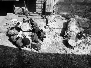 今天市民吴密斯向本报反应,东城区张自忠路3号院即段祺瑞执当局原址内一棵杨树被砍伐(如图)。吴密斯示意树木成长情况很好,枝繁叶茂,砍掉很惋惜。对此,物业称因树木有空泛,且此处预备营建变电站,经园林局批阅砍伐。东城区园林美化局示意,作业人员参加核实后核准砍伐,树木存在平安隐患。