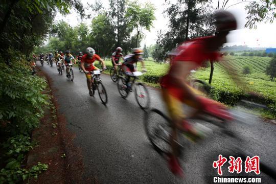 """图为选手在贵州凤冈""""茶海之心景区""""比赛。 贺俊怡 摄"""