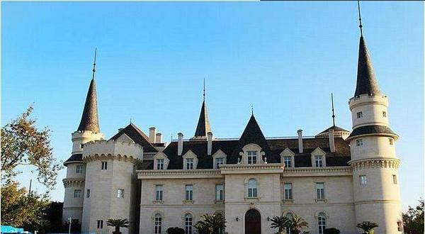 酒庄建筑呈欧式风格,法桐大道,鲜食葡萄采摘园,哥特式城堡,地下大酒窖