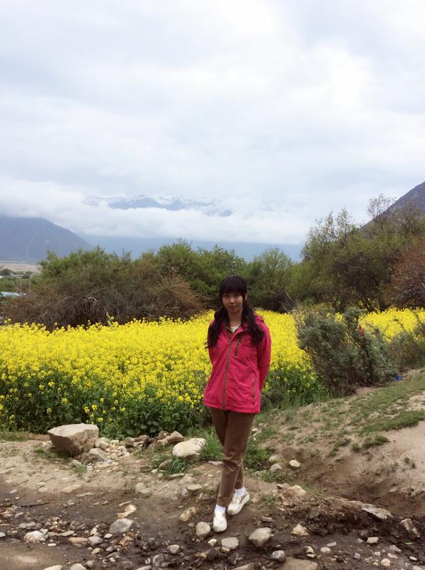 这藏地江南的美名真不是虚名,绿树和江南一样繁盛,花儿和江高清图片