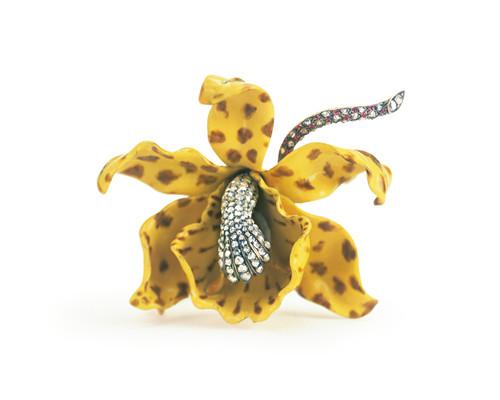 波尔丁·法汉姆设计的兰花胸针,1889年,灵感源自厄瓜多尔和秘鲁山区的兰花,双面均覆盖金色珐琅,雄蕊为褐白两色,钻石花柱从花心处凸起,花茎则镶嵌钻石和红宝石
