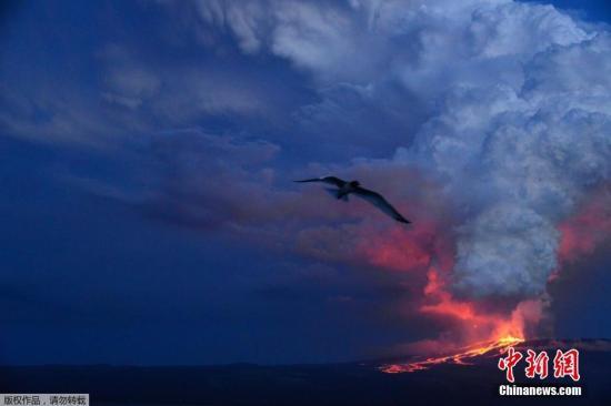 本地时刻2015年5月25日,厄瓜多尔加拉帕戈斯群岛,沃尔夫火山喷发。