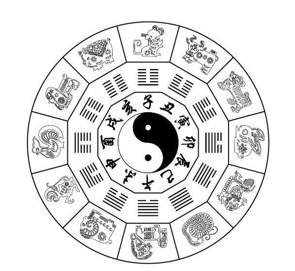 十二生肖与五行阴阳的奥妙关系图片